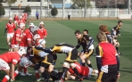 Tailor made rugby tours in Japan